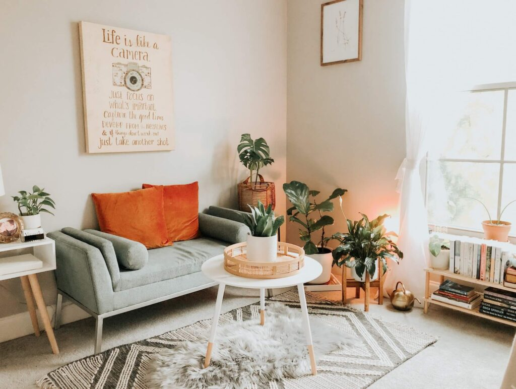 Picture of plants in living room